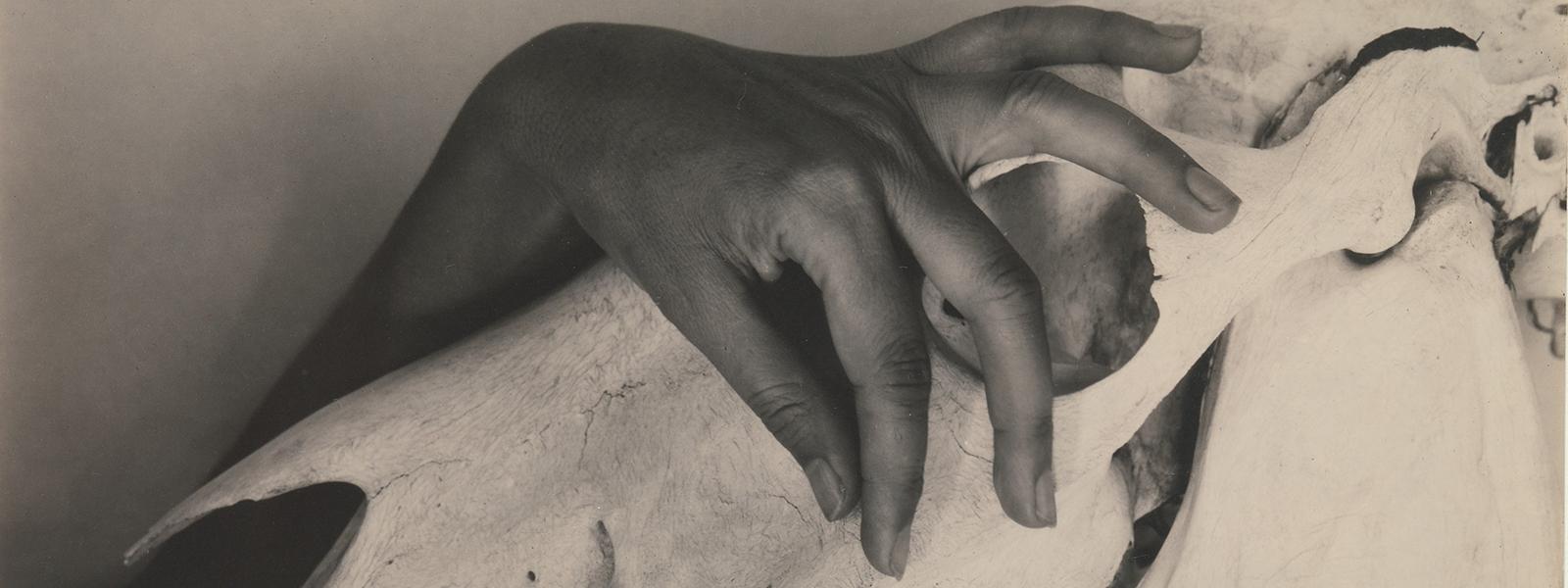 ABYANGA: THE ART OF SELF MASSAGE